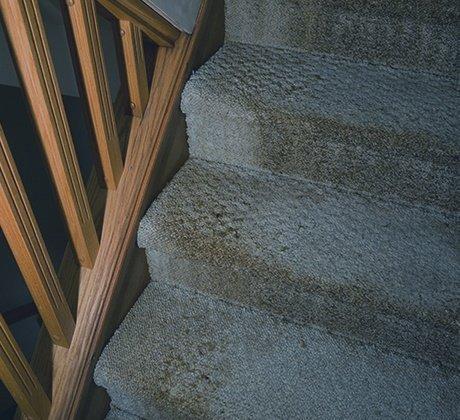 Water Damaged Stairs